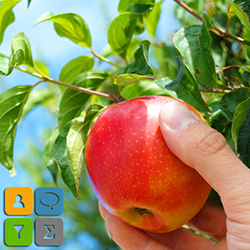 Picking Fruit (to double a business the easy way)